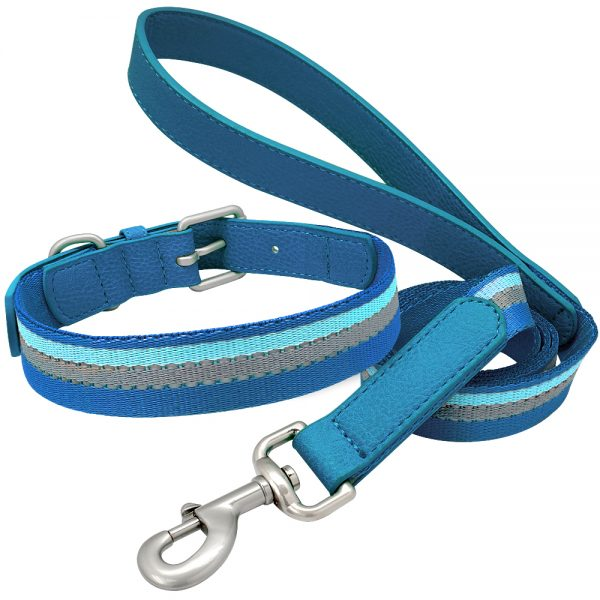 Dog Collar and Leash Set