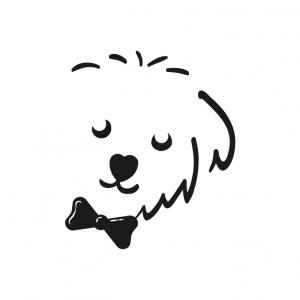 Boy Dog Clothes
