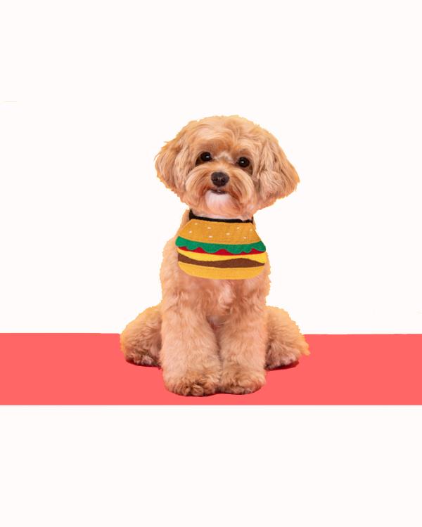Funny Dog Bandanas