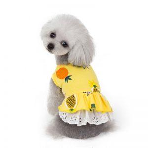 puppy dresses