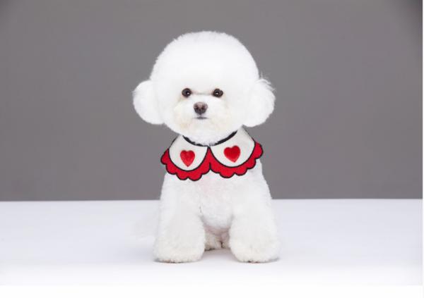holiday dog bandanas
