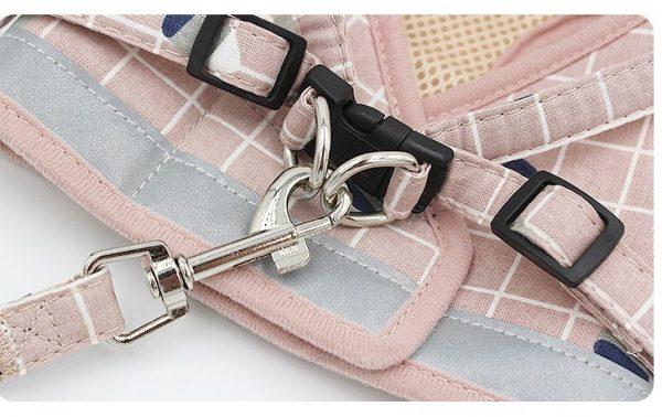 dog harness and leash