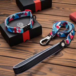 Boy Dog Collars