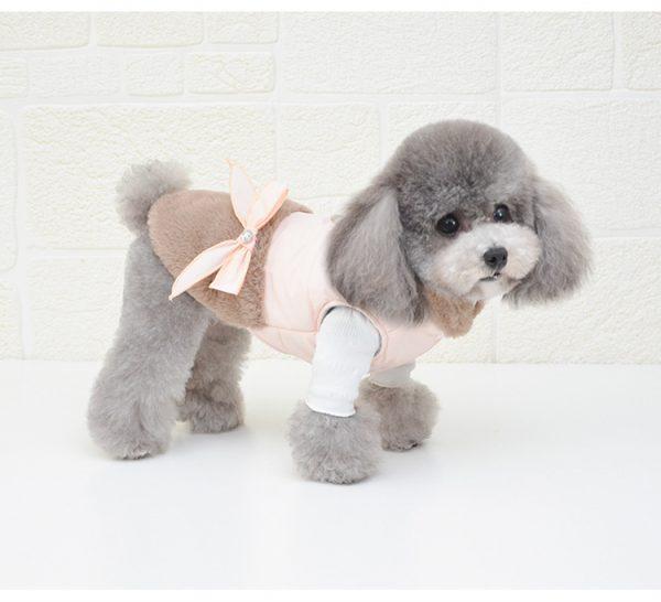 dog coat for winter