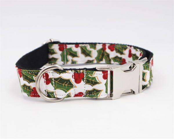 Fancy Dog Collars