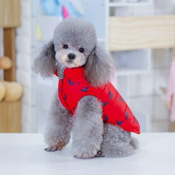dog jackets
