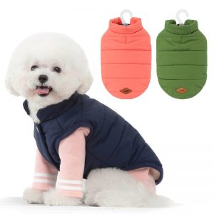 dog winter coat