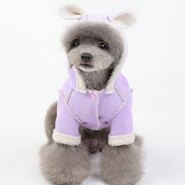 warm dog coats