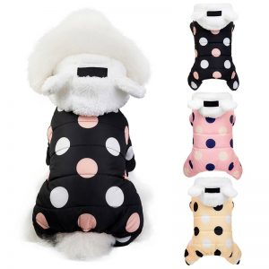 Dog Coats for Small Dogs