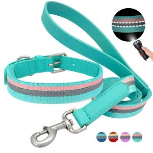 Dog Collar and Leash Set